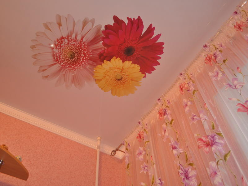 фотопечать на потолке герберы маникюр любит